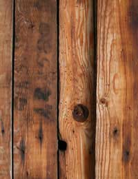 Dealing With Rotten Wood
